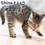 Shineという考え方!