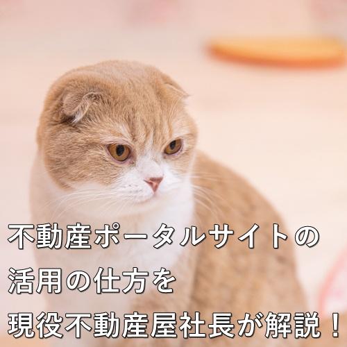 不動産ポータルサイトの活用の仕方を現役不動産屋社長が解説!