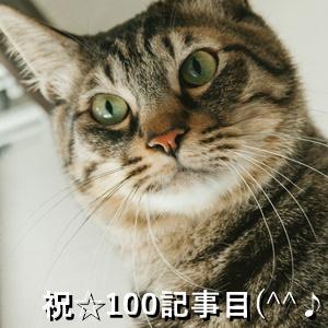 祝☆100記事目(^^♪