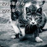 2019年から2020年へ!