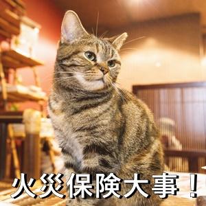 火災保険大事!