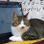 ツイッターとブログ(^^)/