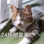 24時間営業(>_<)