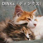 DINKs(ディンクス)