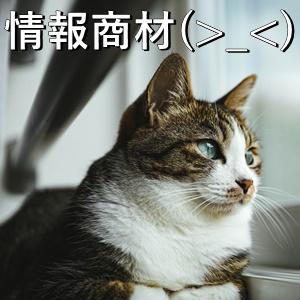 情報商材(>_<)
