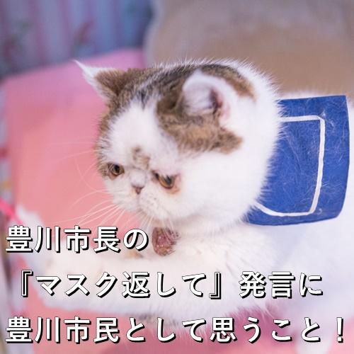豊川市長の『マスク返して』発言に豊川市民として思うこと!
