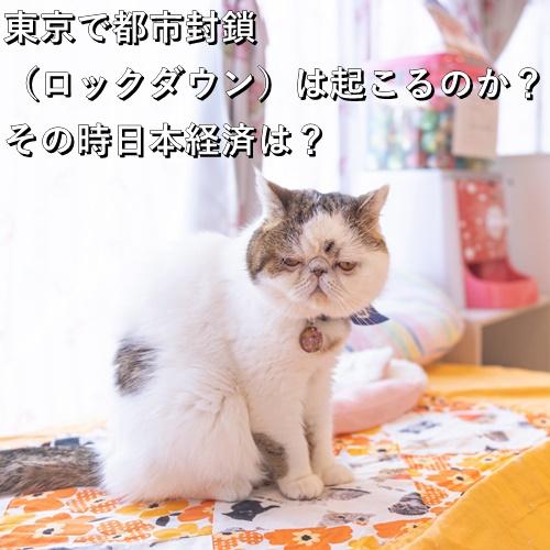 東京で都市封鎖(ロックダウン)は起こるのか?その時日本経済は?