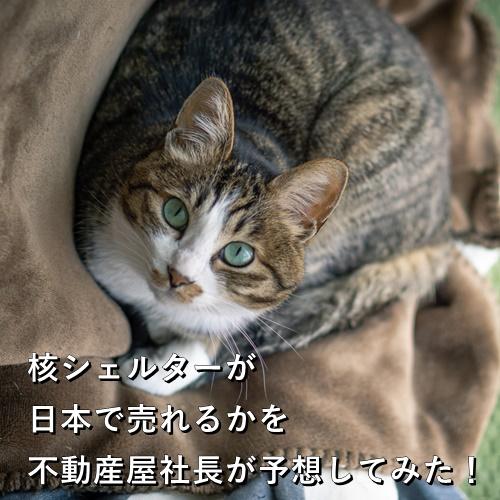 核シェルターが日本で売れるかを不動産屋社長が予想してみた!