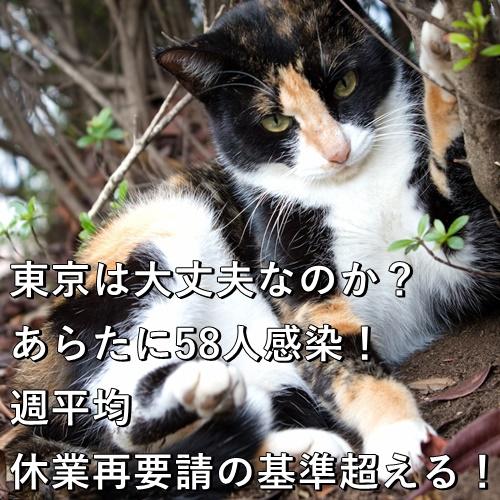 東京は大丈夫なのか?あらたに58人感染!週平均、休業再要請の基準超える!