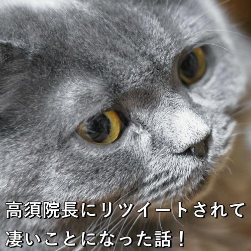 高須院長にリツイートされて凄いことになった話!