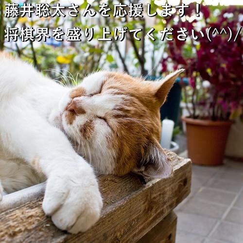 藤井聡太さんを応援します!将棋界を盛り上げてください(^^)/