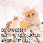 東京都3日連続で新型コロナ感染者100人超!都知事選の行方は?