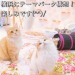 横浜にテーマパーク構想!楽しみです(^^)/