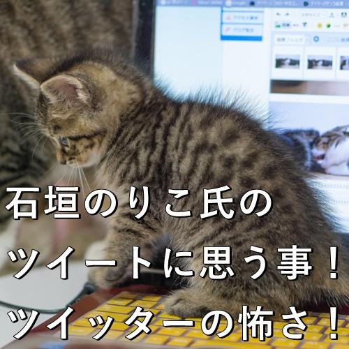 石垣のりこ氏のツイートに思う事!ツイッターの怖さ!