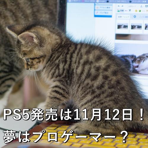 PS5発売は11月12日!夢はプロゲーマー?
