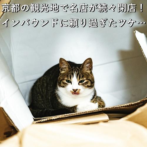 京都の観光地で名店が続々閉店!インバウンドに頼り過ぎたツケ…