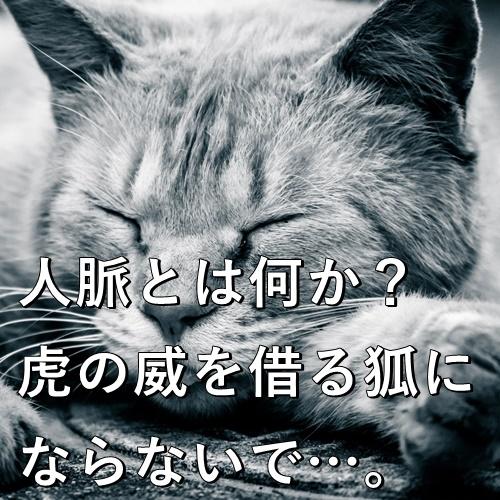 人脈とは何か?虎の威を借る狐にならないで…。
