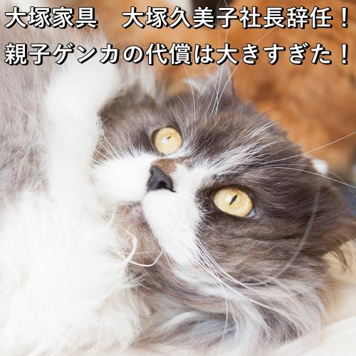 大塚家具 大塚久美子社長辞任!親子ゲンカの代償は大きすぎた!