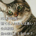 NHK受信料、観てる人は払えば良い!公共放送、他の国はどうなのか?