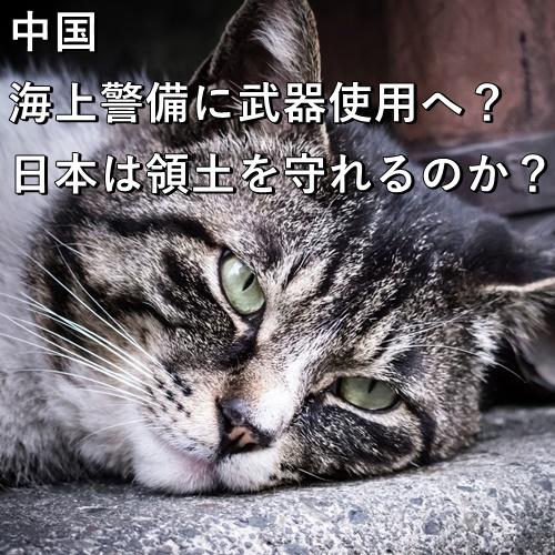 中国、海上警備に武器使用へ?日本は領土を守れるのか?