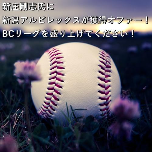 新庄剛志氏に新潟アルビレックスが獲得オファー!BCリーグを盛り上げてください!