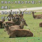 奈良のシカ死なせた疑いで逮捕!動物を虐待するのは許せない!