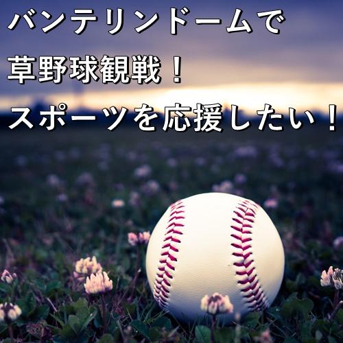 バンテリンドームで草野球観戦!スポーツを応援したい!