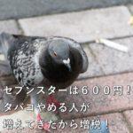 セブンスターは600円!タバコやめる人が増えてきたから増税!