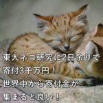 東大ネコ研究に2日余りで寄付3千万円!世界中から寄付金が集まると良い!