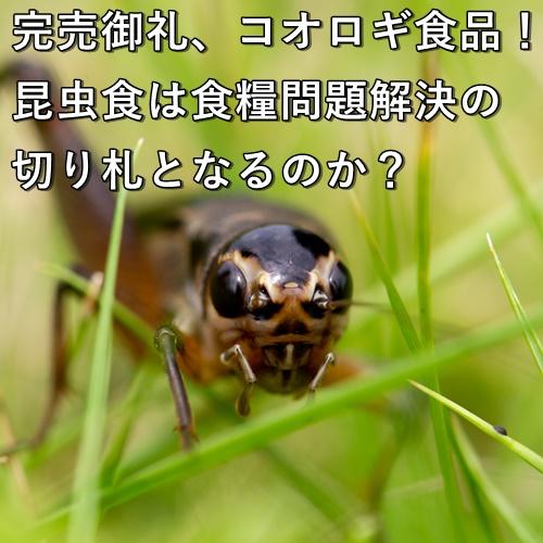 完売御礼、コオロギ食品!昆虫食は食糧問題解決の切り札となるのか?